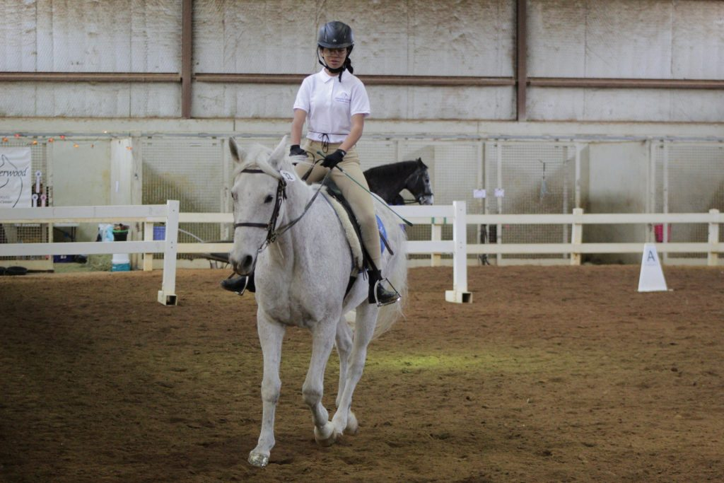 Therapeutic Recreational Riding