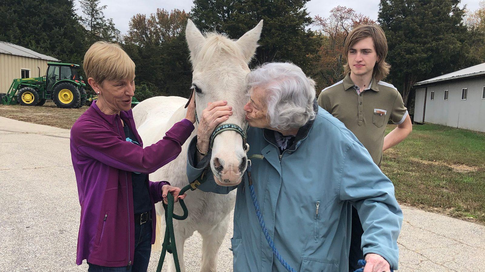 senior kissing horse